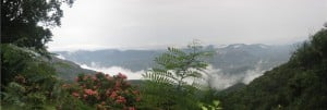 view_from_tirumala_hills