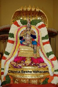 06-Chinna sesha Vahanam copy