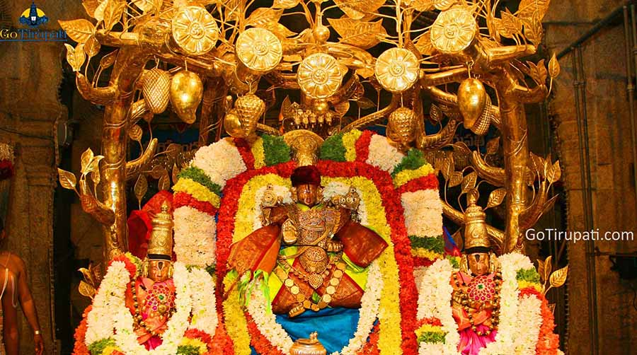 50 rs Ticket Tirumala Online Booking Darshan Timings TTD