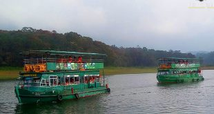 Periyar Jungle Camp