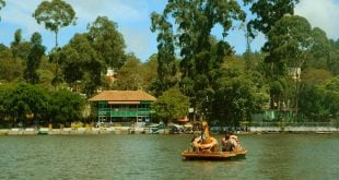 Yercaud Lake Boating