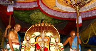Tirupati Darshan Bus Package