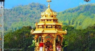 Tirupati Darshan Packages
