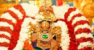 Tiruchanur VIP Break Darshan