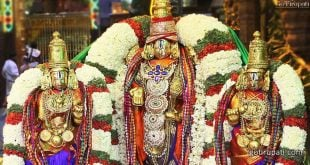 Tirupati 5 years Children Darshan