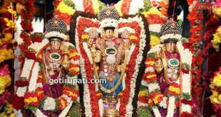 One day Chennai Tirupati Tour