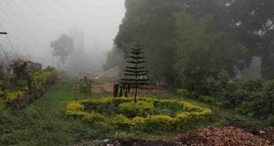 Yercaud Hill station