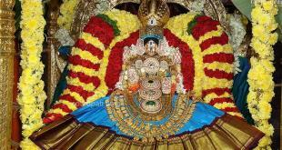 Tirupati Darshan Available now