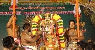 NRI Darshan Procedure Tirumala